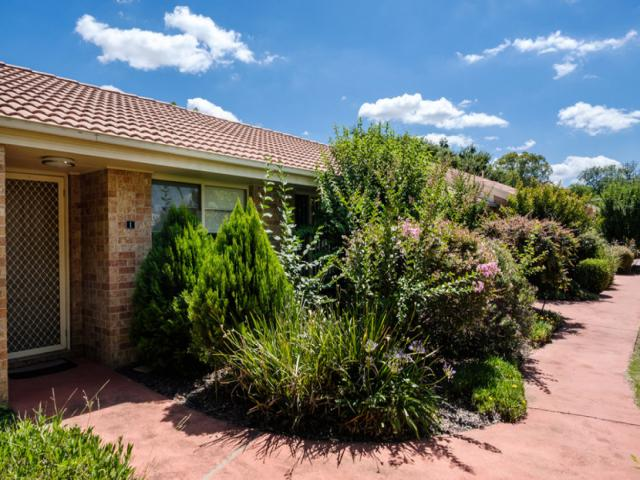 Large 1 Bedroom Unit With Care & Support Services - Tamworth - Nsw - 1/1