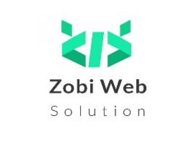 Zobi Web Solutions - A Trusted Shopify Development Company - 1/1